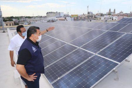 El Ayuntamiento de Mérida promueve acciones ciudadanas ante el Cambio Climático